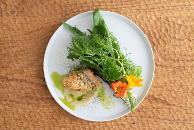 甘鯛のソテー大根とフェンネルのソース ハーブのサラダ